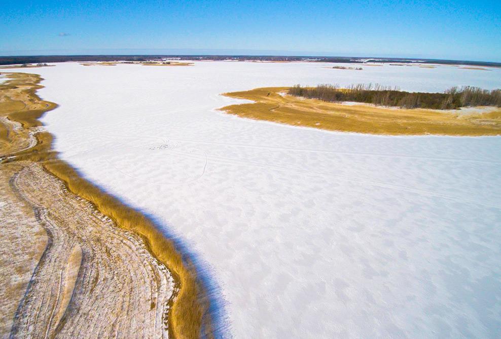 Curative mud from Käina Bay